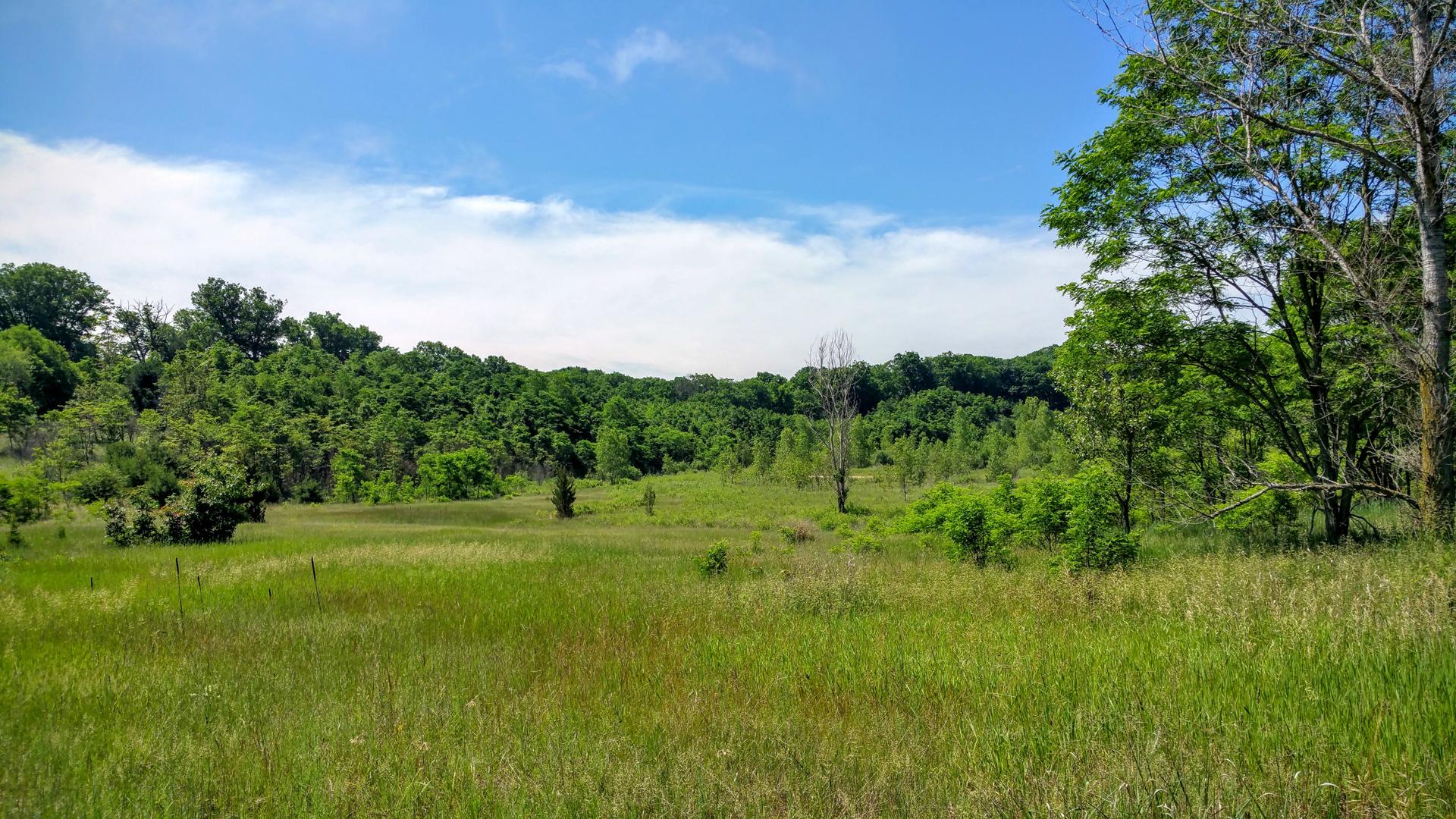 Beautiful Acreage Near Lake Michigan